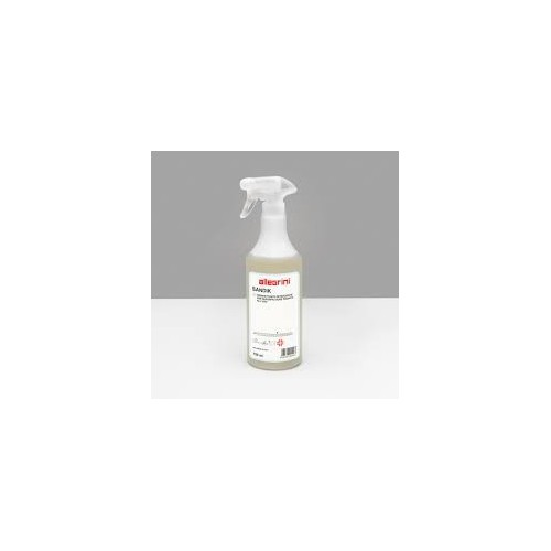 Detergente disinfettante professionale SANDIK - Spruzzino 750 ml